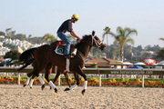 Virtual Horse Racing Games Sport the Breeder's Cup Simulations - Get Started!